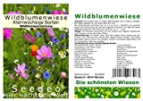 Seedeo Wildblumenwiese Kleinwüchsige Sorten
