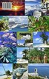 Schlaglichter Cayman Islands: Highlights, Tipps und Kuriositäten - Daniel A. Kempken