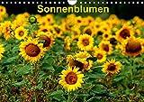 Sonnenblumen (Wandkalender 2019 DIN A4 quer): Sonnenblumen in verschiedenen Farben und Formen, wie gewachsen im Feld (Monatskalender, 14 Seiten ) (CALVENDO Natur)