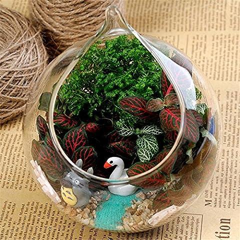 Ohpa Hanging fiore di vetro vaso vaso e Mini acquario terrario contenitore giardino di casa decorazione palla decorazione in vetro trasparente - Vase Trio