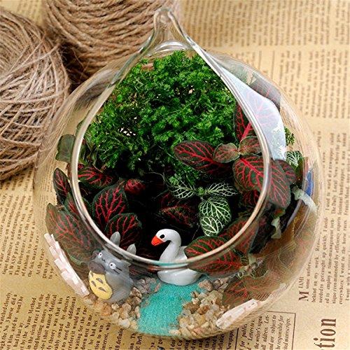 ohpa-aufhangen-glas-blume-ubertopf-vase-mini-fisch-tank-terrarium-container-home-garten-ball-decor-h