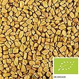500g di semi di fieno greco BIO: semi di fieno greco intero per insalate, tè o per speziare, senza additivi