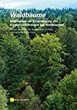 Waldbäume: Bildserien zur Einschätzung von Kronenverlichtungen bei Waldbäumen - Stefan Meining, A Bauer, I Dammann, P Gawehn, H W Schröck, J Wendland, Ch Ziegler