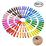100PCS Wooden Colored Photo Clips Colored Clothespins Clothe Photo Paper Craft DIY Clip with 20M Jute Twine