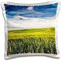 Danita Delimont - Agriculture - USA, Washington,