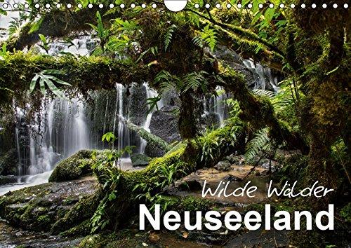 Neuseeland - Wilde Wälder (Wandkalender 2019 DIN A4 quer): Tauchen Sie ein in die Urwälder Neuseelands! (Monatskalender, 14 Seiten ) (CALVENDO Natur)