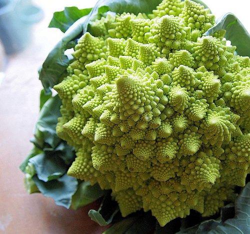 Blumenkohl Romanesco – Kohl – Broccoli – Brokkoli – 100 Samen