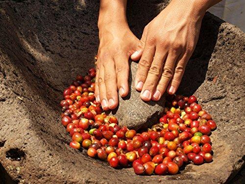 Bionatural Bio Fairtrade Kaffee-Espresso ganze Bohne by J. Hornig, 1000 g - 4