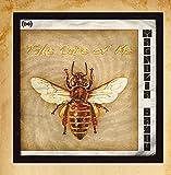 Take Care of Me (Honey Bee)