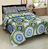 Zesture 100 % cotton Double Bedsheet with 2 Pillow Covers