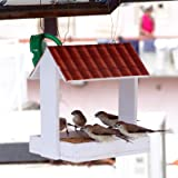 PAXI DAYA Hanging Fiber Waterproof Bird Feeder for All Small Birds for Indoor and Outdoor Outside Both.
