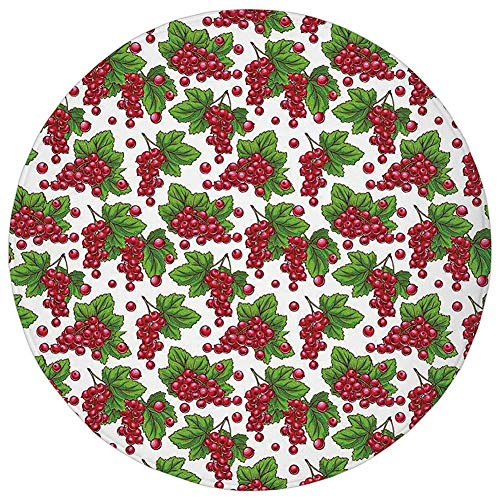 ZMYGH Round Rug Mat Carpet,Spring,Redcurrant Branches with Leaves Grape Harvest Agriculture Fruit Illustration,Fern Green Ruby,Flannel Microfiber Non-Slip Soft Absorbent,for Kitchen Floor Bathroom Grape Leaf Dish