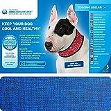 Aqua Coolkeeper Pacific Hundehalsband mit Frischefunktion, blau