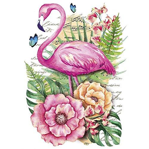 Color Bügeltransfer, DIN A4, filigran ohne Hintergund, tropische Tiere   Textilien wie T-Shirts & Taschen mit Bügelmotiven verzieren   Transfer-Bilder schnell & einfach aufbügeln   DIY Textildesign (Flamingo)