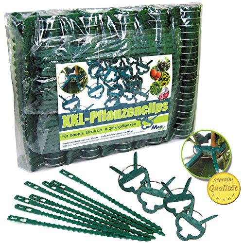 piante-clips-di-collegamento-pianta-stabile-clip-per-piante-piccole-grandi-cambio-spaliere-rose-rank