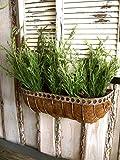 Antikas - Blumenkasten Zink und Kokos, Balkonkasten, Balkonbepflanzung, Pflanzkübel Balkon