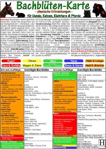 Bachblüten-Karte für Hunde, Katzen, Kleintiere & Pferde - physische Erkrankungen