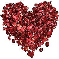 Hestya 100 Grams Dried Rose Petals Red Real Flower Rose Petal for Bath Foot Bath Wedding Confetti Crafts Accessories, 1 Bag