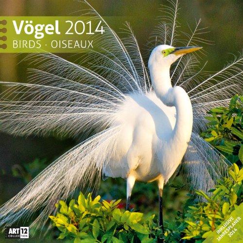 Vögel 2014 Art12 Collection