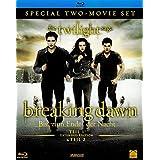 Breaking Dawn - Biss zum Ende der Nacht, Teil 1 + 2