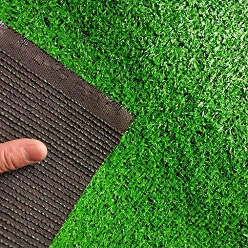 YUER Simulation Rasen grünen Teppich, Kunstrasen gefälschte Grasmatte, Kindergarten Outdoor Fußballplatz 4S Shop Dach Kunstrasen Boden Wanddekoration Kunstrasen (Farbe : 2.5cm, größe : 2mx1m)