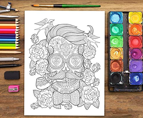 Colorvelvet 47 X 35 Cm Calavera Sistema De Dibujo Para Colorear Tamaño Grande