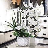 DSAAA Faux Fleurs florales artificielles Orchidée blanche en pot d'émulation de vases en céramique à la maison de décor