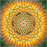 Posterlounge Leinwandbild 100 x 100 cm: Blume des Lebens - Gelber Lotos von Dirk Czarnota - fertiges Wandbild, Bild auf Keilrahmen, Fertigbild auf Echter Leinwand, Leinwanddruck