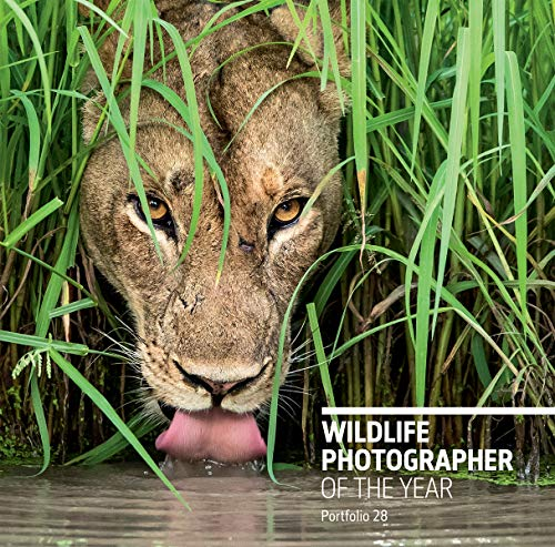 Wildlife Photographer of the Year: Portfolio 28 por Rosamund Kidman Cox