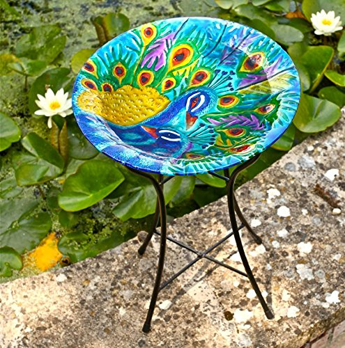 Smart Garden Ornamental 50cm Glass Weatherproof Bird Bath Bowl with Metal Stand