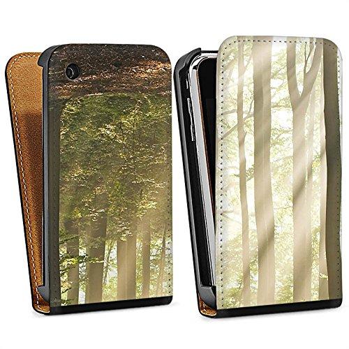 Apple iPhone 5s Housse Étui Protection Coque Forêt Clairière Rayons de soleil Sac Downflip noir