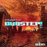 Straight Up Dubstep! Vol. 12