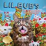 Lil Bub 2017 Calendar