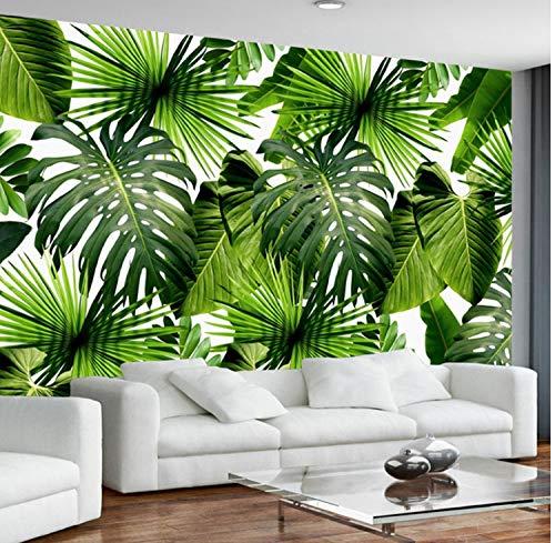 Wallpaperasia Tropical Rainforest Banana Leaf Photo Background Wall Murals 1 ㎡ -
