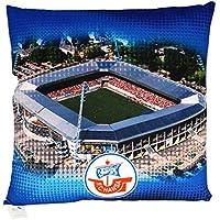 "Hansa Rostock Kissen ""Stadion"" Maße: 38x38cm - Material: 100% Polyester"