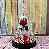 HY&PPJQ Schöne und das Biest Rose Geschenkbox Kleiner Prinz Ewige Blume,Tanabata Valentinstag Kreativ-Q
