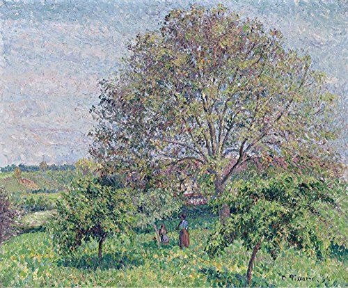 Das Museum Outlet - Tolles nut-tree im Frühling, Eragny, 1894, gespannte Leinwand Galerie verpackt. 29,7 x 41,9 cm