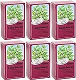 (6 PACK) - Floradix - Lemon Balm Organic Herbal Tea | 15 Bag | 6 PACK BUNDLE