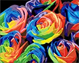 [ New Release ] Diy Oil Painting by Numbers, Paint by Number Kits - Colorful Rose Flower 16*20 inches - Digital Oil Painting Canvas Wall Art Artwork Landscape Paintings for Home Living Room Office Christmas Decor Decorations Gifts - Diy Paint by Numbers Diy Canvas Kit for Adults Advanced Children Seniors Junior - New Arrival - No. D170