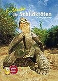 Entdecke die Schildkröten (Entdecke - Die Reihe mit der Eule)