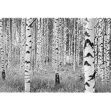 Tapete weiß schwarz  Suchergebnis auf Amazon.de für: wald tapete schwarz weiß