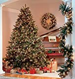Christmas Trees - Best Reviews Guide