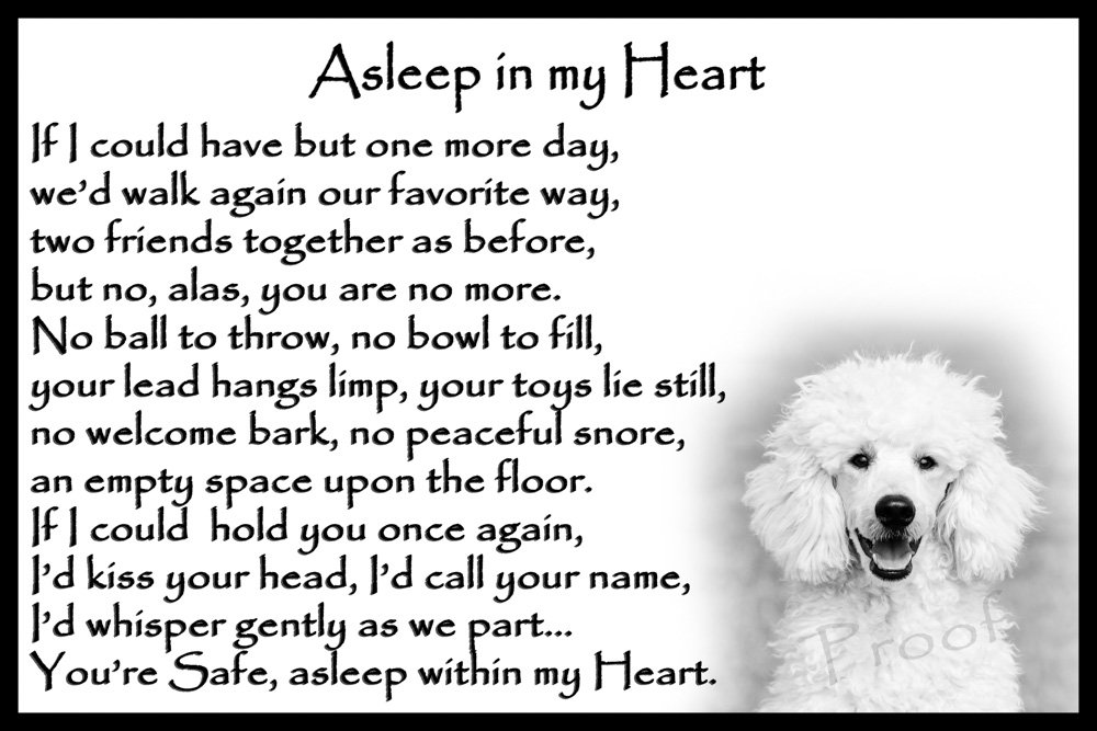 Poodle Memorial dog bereavement pet loss Flexible Fridge Magnet – Asleep in my Heart