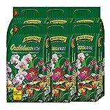 6 Sack Orchideenerde á 5L = 30 Liter BODENGOLD Premium
