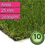 Kunstrasen Rasenteppich Arida für Garten - Florhöhe 25 mm - Gewicht ca. 2030 g/m² - UV-Garantie 10 Jahre (DIN 53387) - 2,00 m x 0,50 m | Rollrasen | Kunststoffrasen