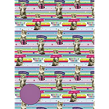 2 sheets 70 x 50cm /& 2 Matching Tags Gift Wrap Kitten /& Spots