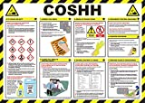 Best Safety Posters - Safety First Aid Laminated COSHH Poster Review