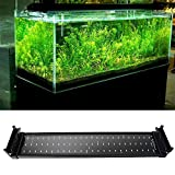 SUNSBELL® 11W Extendable LED Aquarium Lights for Fish Tank Water Plants Blue and White Color LED Reef Aquarium Lighting