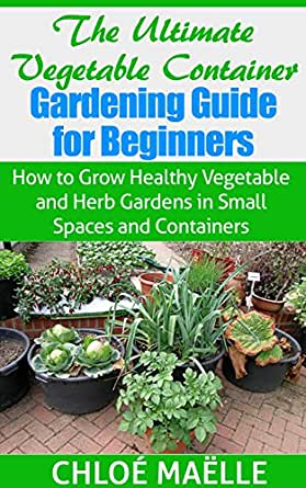 Vegetable Container Gardening Guide For Beginners How To Grow Healthy Vegetable Herb