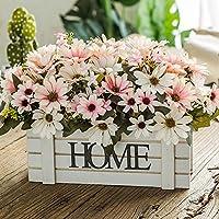 Suchergebnis Auf Amazon De Fur Fensterbank Deko Blumen
